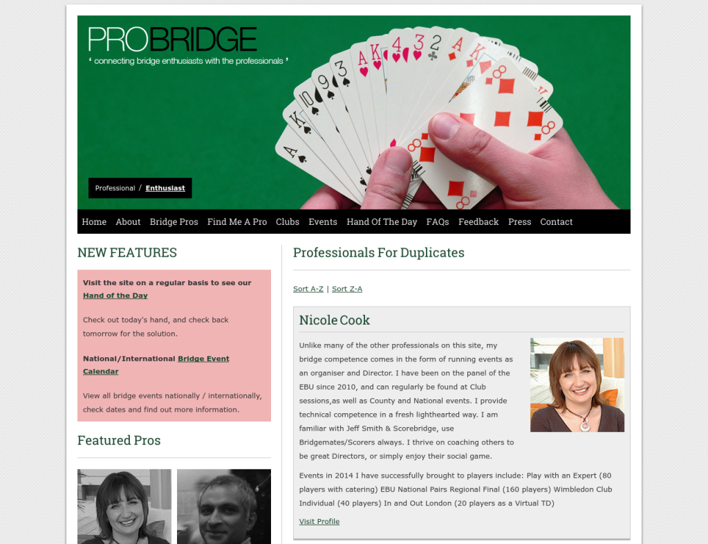 pro bridge web development - website designer reading berkshire