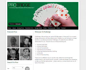 ProBridge Homepage web design
