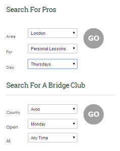 ProBridge web design contact form