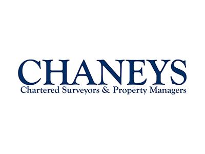 chaneys web design management reading