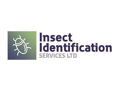 insect id reading website design seo