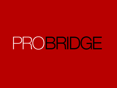 pro bridge web design seo