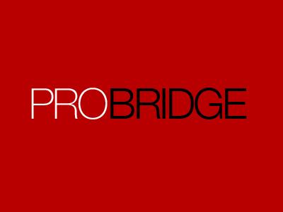 pro bridge web design seo