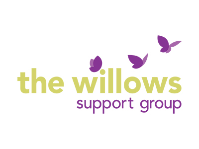 willows web design reading berkshire seo
