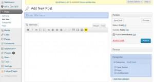 Adding a new page - wordpress design blog